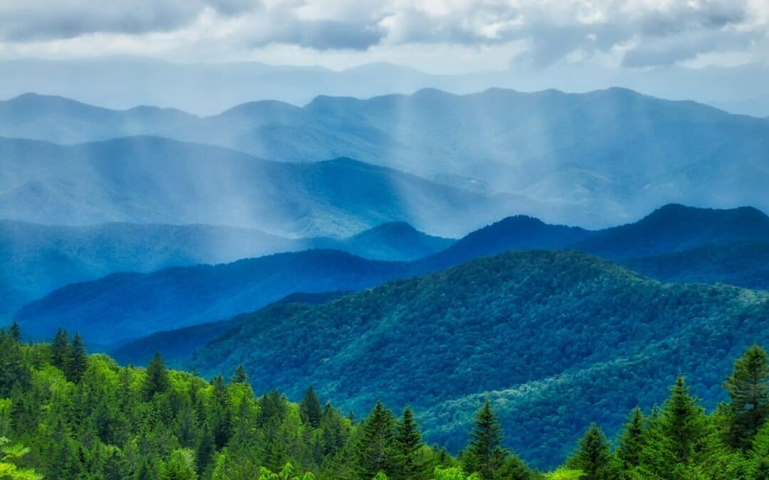 Conservation Easement Update: Pine Mountain Preserve Case Brings Big Impact to the Land Conservation Community