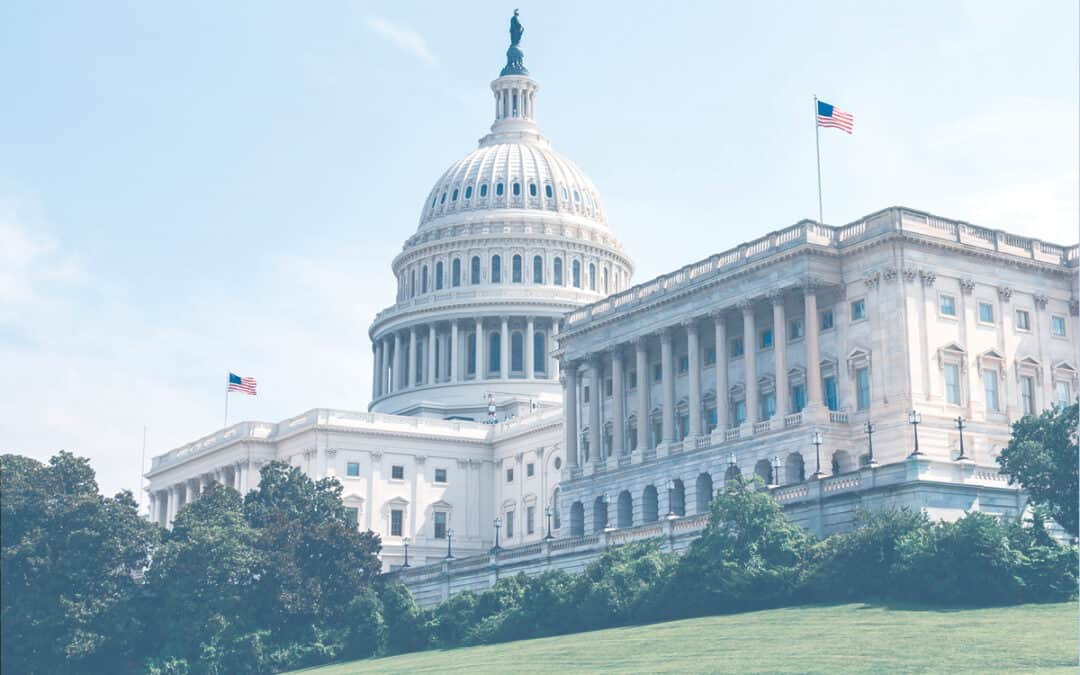 The Consolidated Appropriations Act: A Breakdown of COVID-19 Relief for Businesses